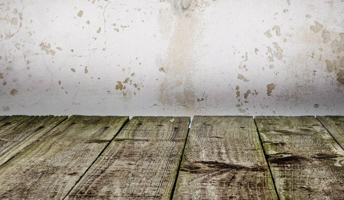 wall-316700_1280
